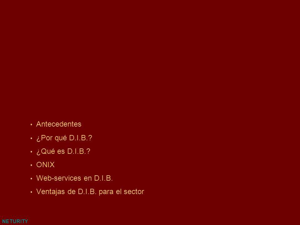 NETURITY Antecedentes ¿Por qué D.I.B.? ¿Qué es D.I.B.? ONIX Web-services en D.I.B. Ventajas de D.I.B. para el sector