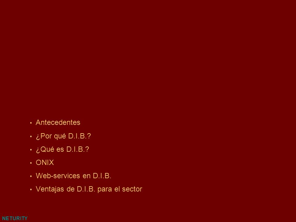 NETURITY Web-services en D.I.B.
