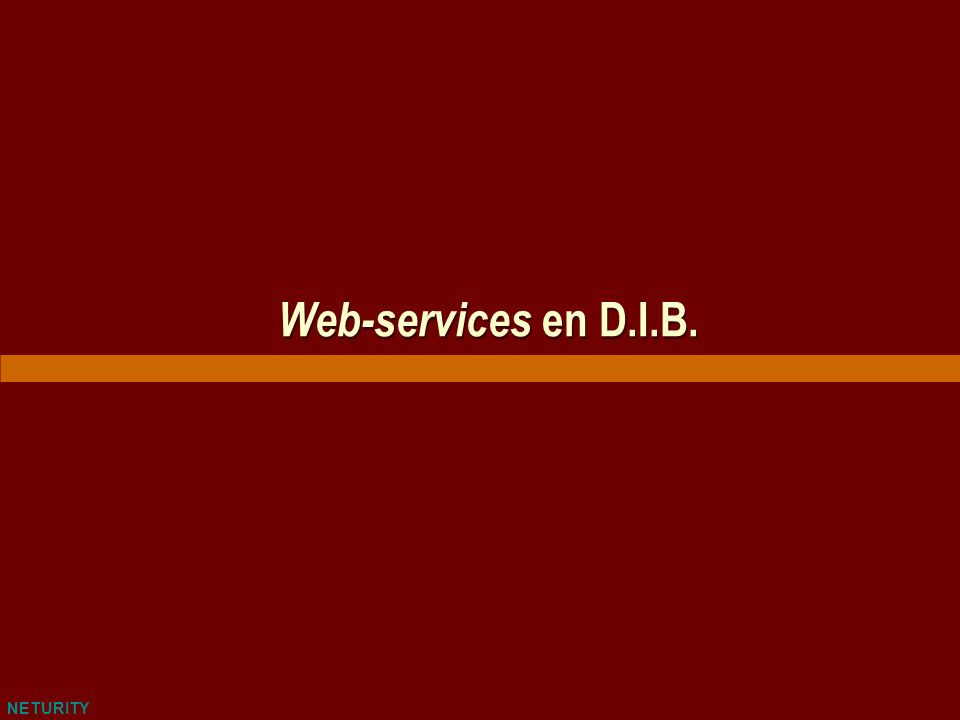 NETURITY Web-services en D.I.B.