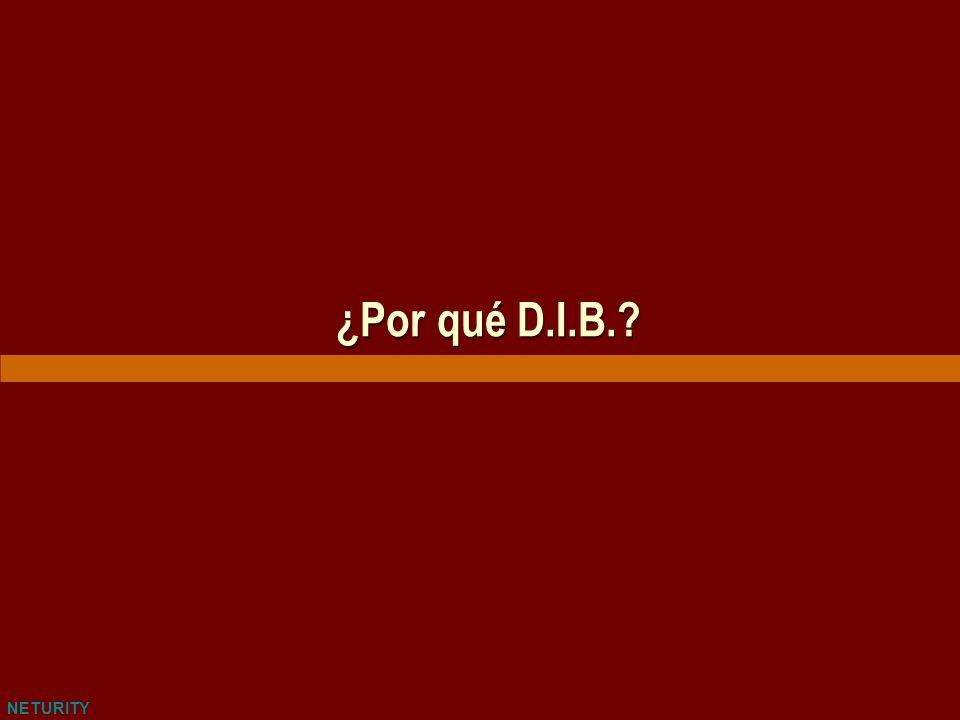 NETURITY ¿Por qué D.I.B.?
