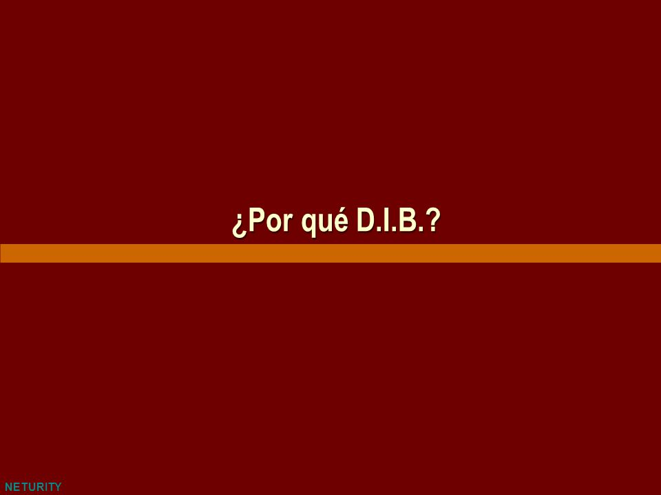 NETURITY Ventajas de D.I.B.