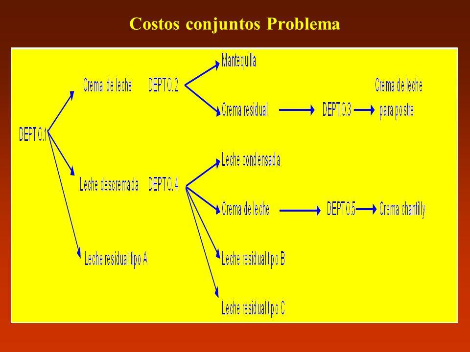 Costos conjuntos Problema