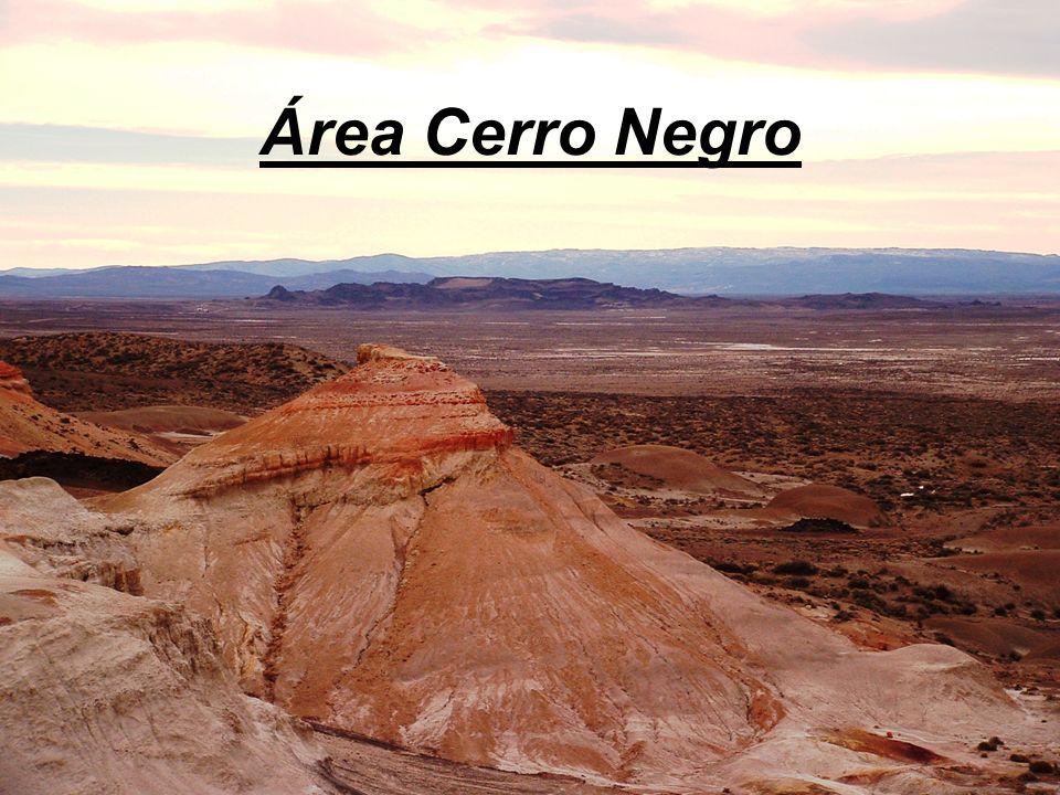 Área Cerro Negro