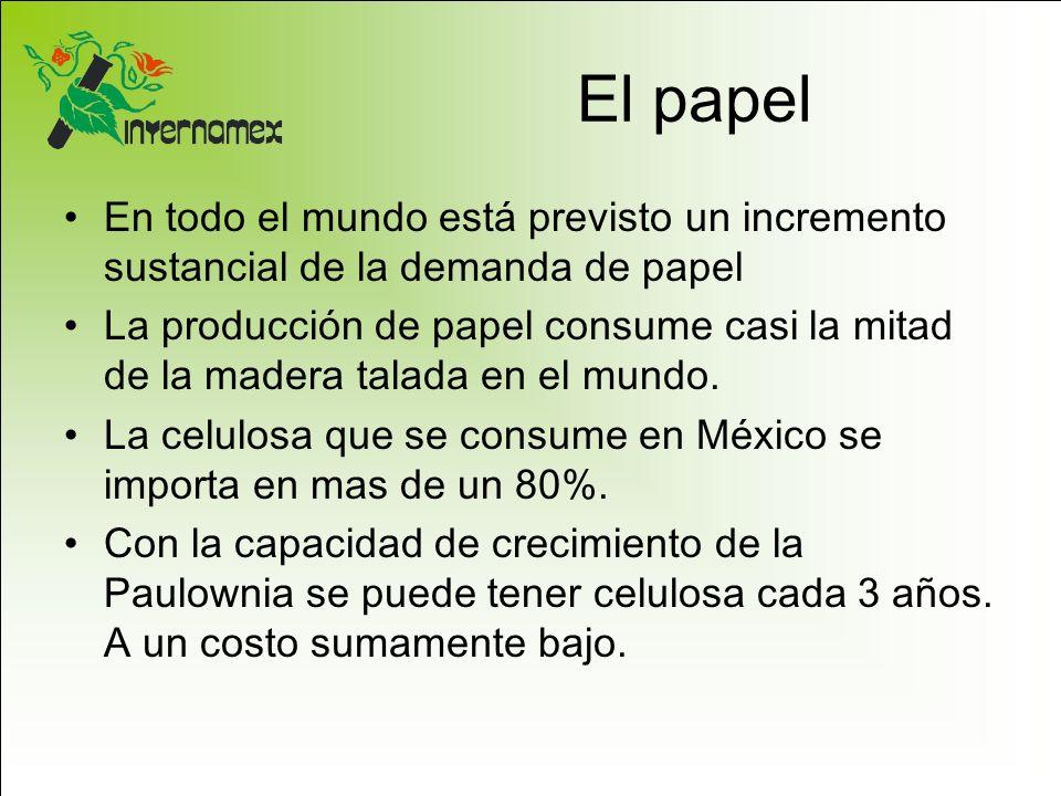 El papel En todo el mundo está previsto un incremento sustancial de la demanda de papel La producción de papel consume casi la mitad de la madera tala