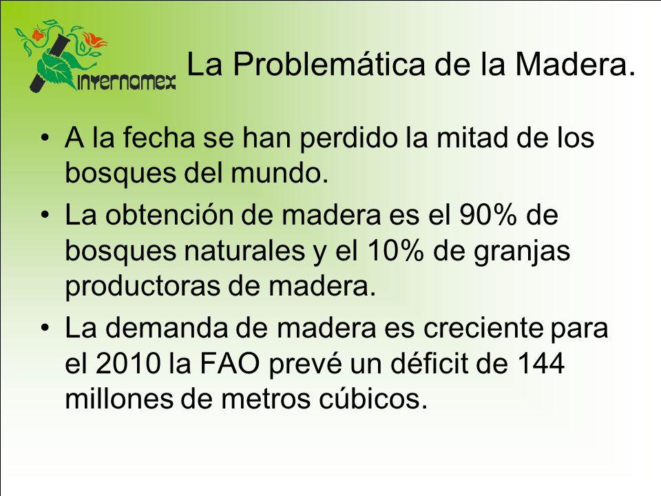 La Problemática de la Madera. A la fecha se han perdido la mitad de los bosques del mundo. La obtención de madera es el 90% de bosques naturales y el