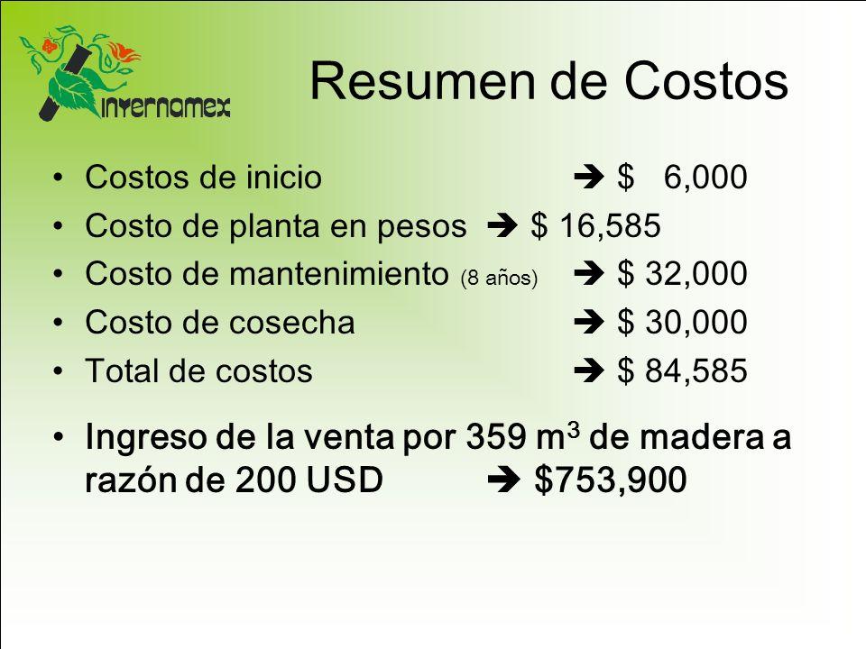 Resumen de Costos Costos de inicio $ 6,000 Costo de planta en pesos $ 16,585 Costo de mantenimiento (8 años) $ 32,000 Costo de cosecha $ 30,000 Total