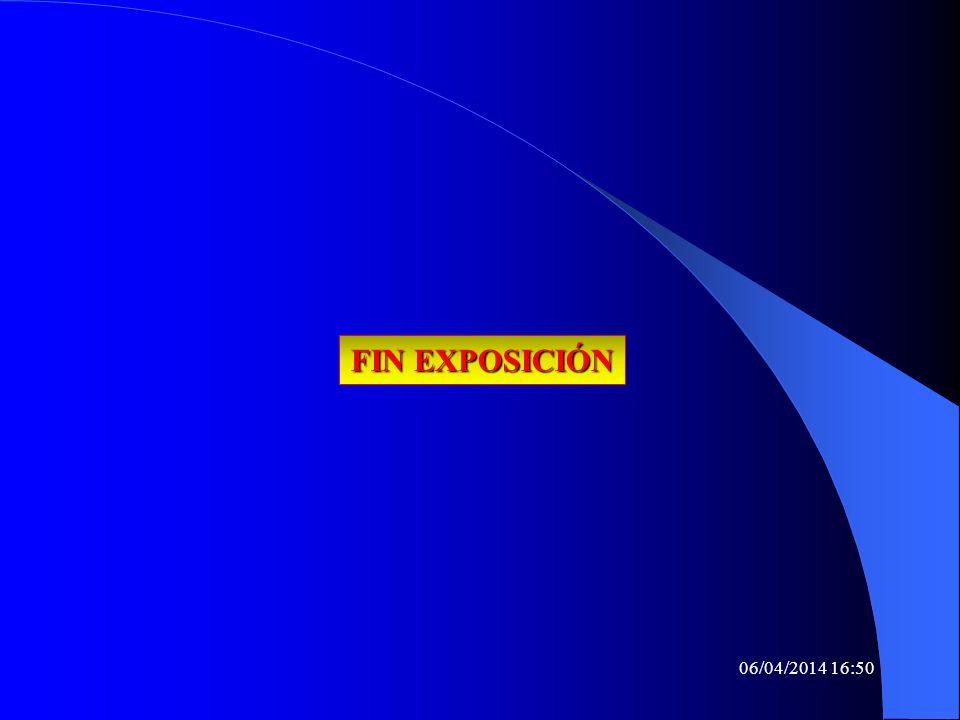 06/04/2014 16:52 FIN EXPOSICIÓN