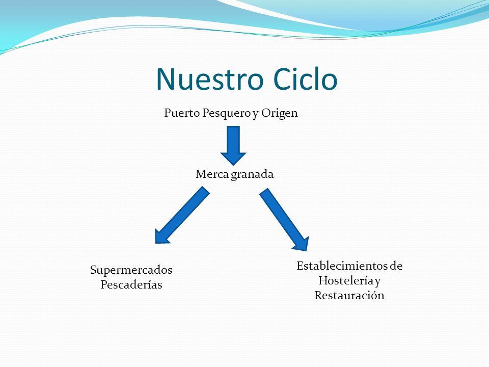 Nuestro Ciclo Puerto Pesquero y Origen Merca granada Supermercados Pescaderías Establecimientos de Hostelería y Restauración
