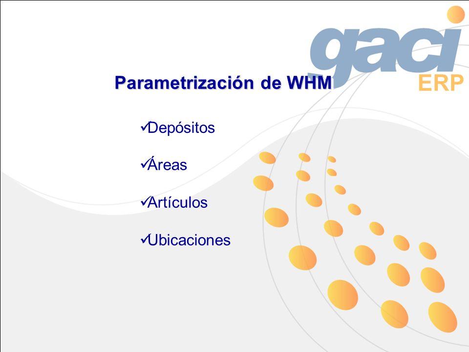 Parametrización de WHM Depósitos Áreas Artículos Ubicaciones