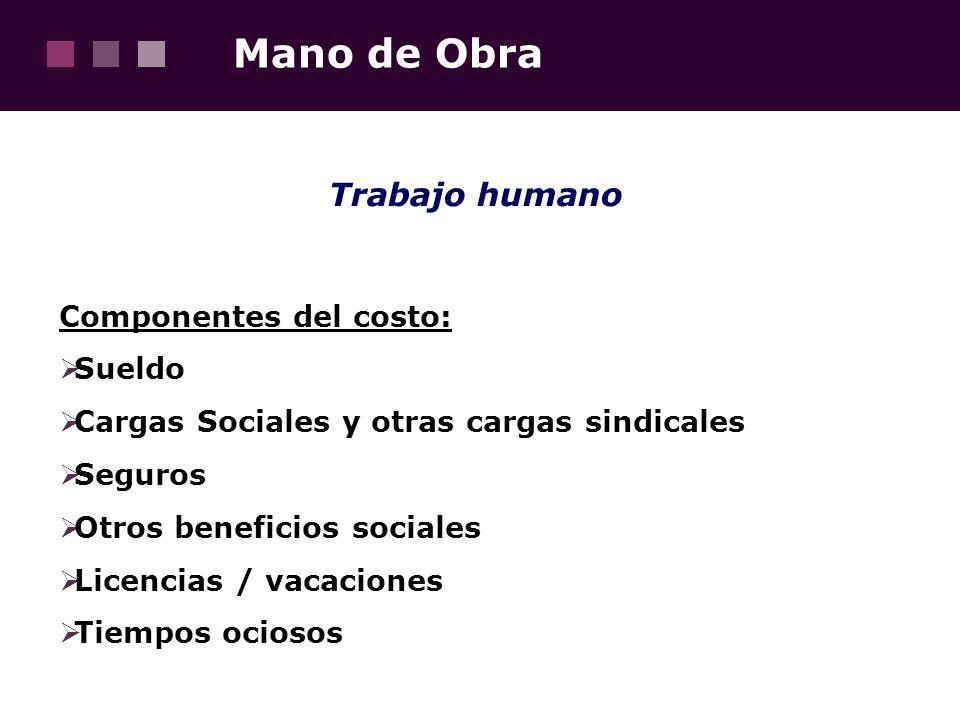 Mano de Obra Trabajo humano Componentes del costo: Sueldo Cargas Sociales y otras cargas sindicales Seguros Otros beneficios sociales Licencias / vaca