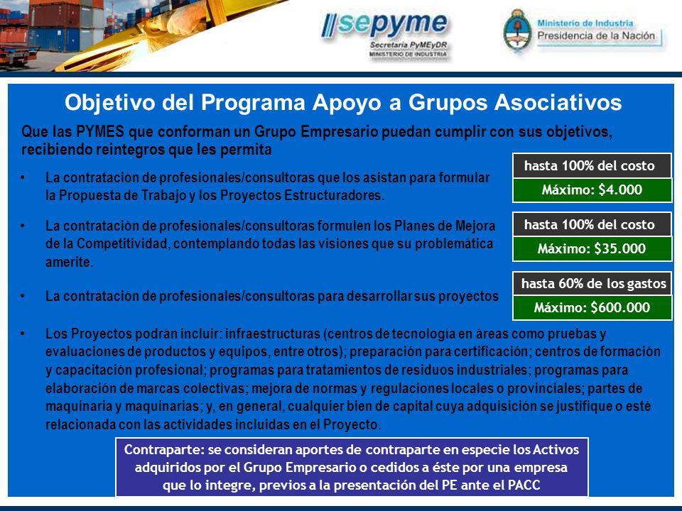 Objetivo del Programa Apoyo a Grupos Asociativos La contratación de profesionales/consultoras que los asistan para formular la Propuesta de Trabajo y los Proyectos Estructuradores.
