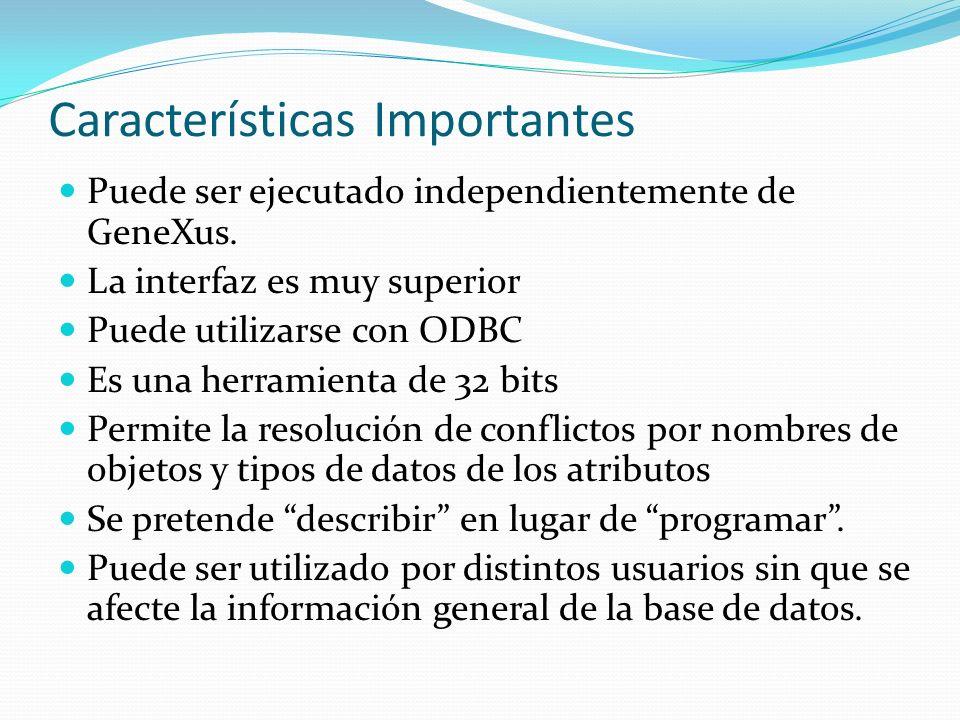 Características Importantes Puede ser ejecutado independientemente de GeneXus. La interfaz es muy superior Puede utilizarse con ODBC Es una herramient