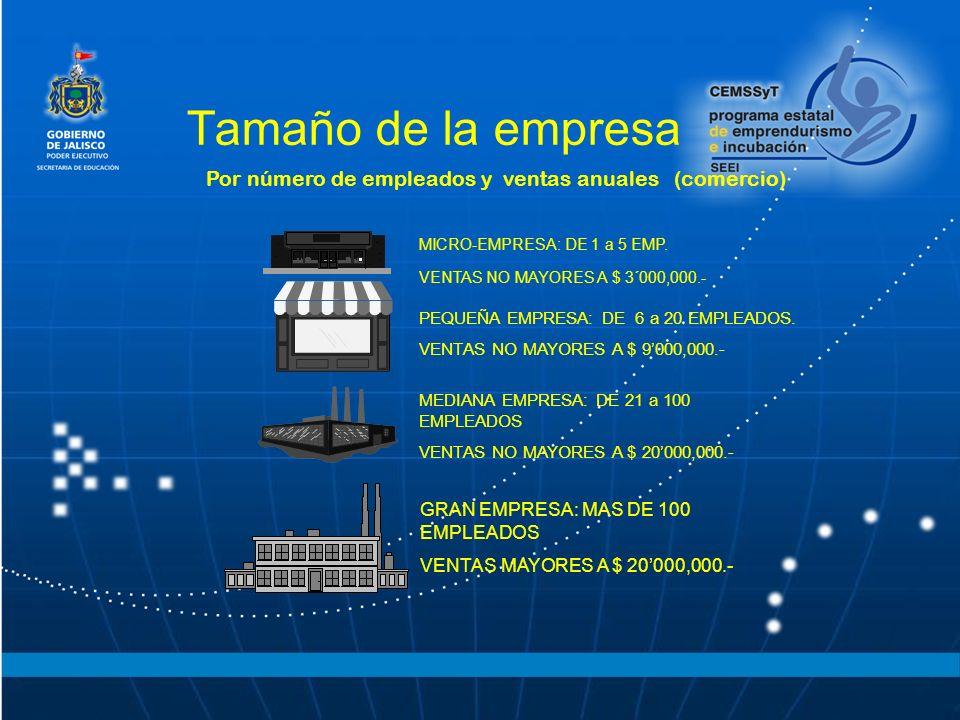 Tamaño de la empresa Por número de empleados y ventas anuales (comercio) MICRO-EMPRESA: DE 1 a 5 EMP. VENTAS NO MAYORES A $ 3´000,000.- PEQUEÑA EMPRES