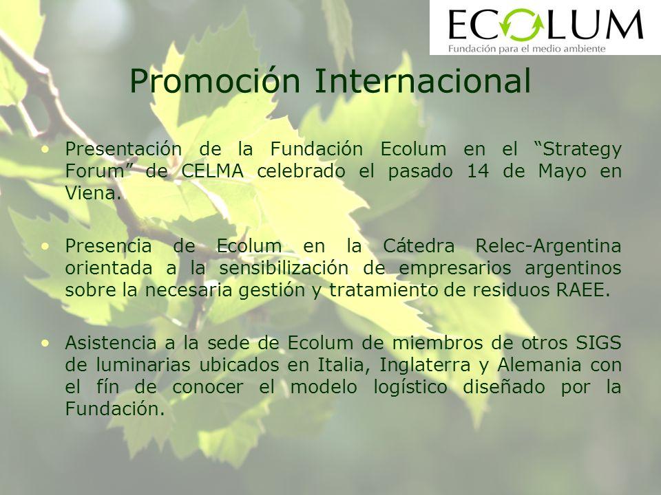 Promoción Internacional Presentación de la Fundación Ecolum en el Strategy Forum de CELMA celebrado el pasado 14 de Mayo en Viena.