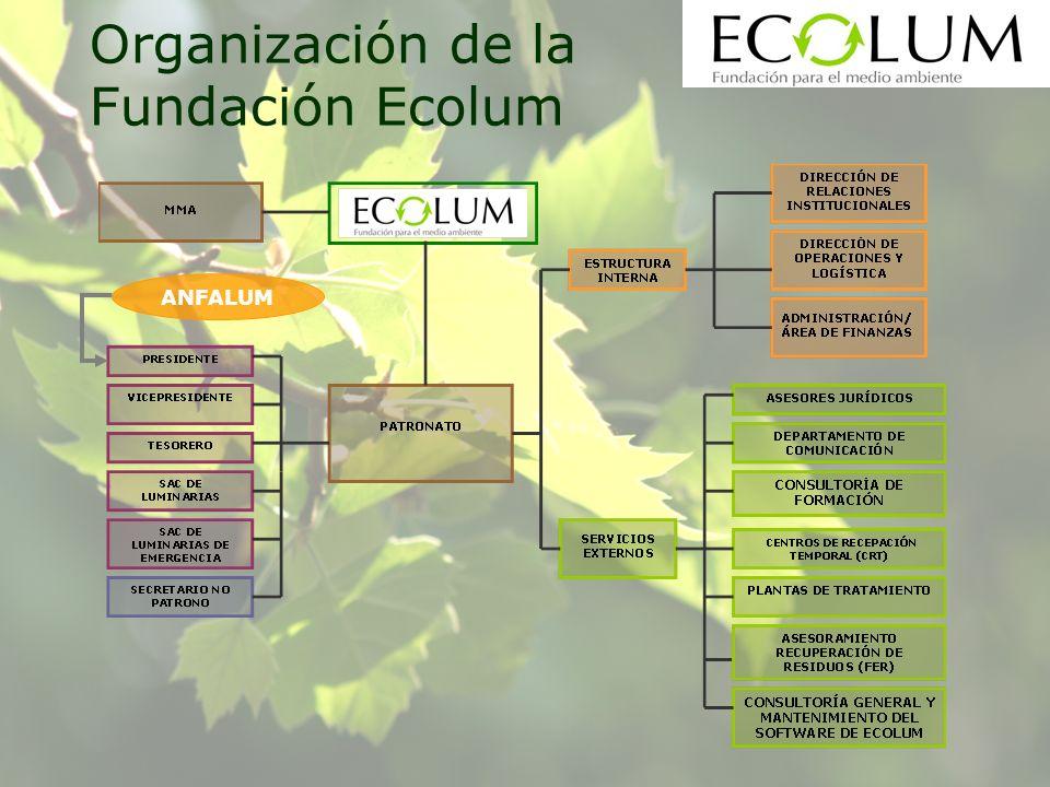 ANFALUM Organización de la Fundación Ecolum