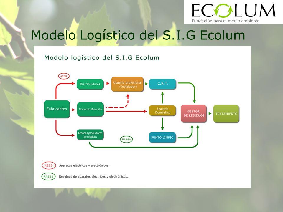 Modelo Logístico del S.I.G Ecolum