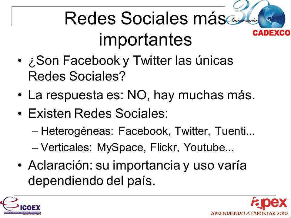 Redes Sociales más importantes ¿Son Facebook y Twitter las únicas Redes Sociales.