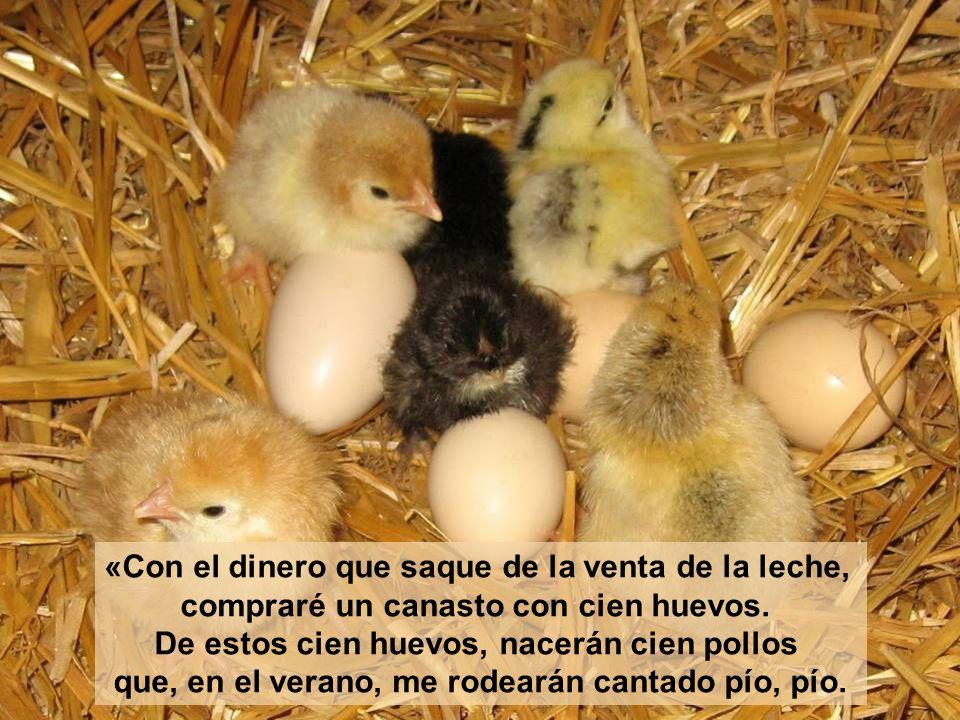 «Con el dinero que saque de la venta de la leche, compraré un canasto con cien huevos.