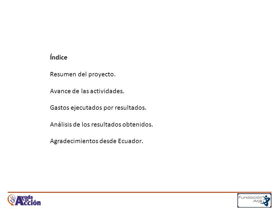 Índice Resumen del proyecto. Avance de las actividades.
