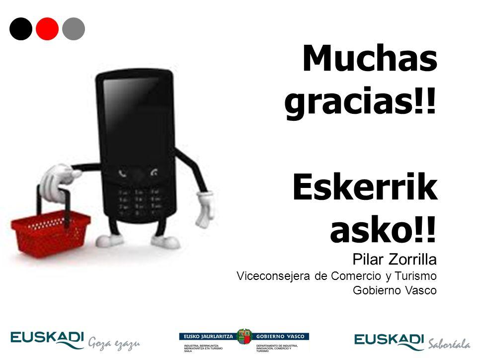 32 Muchas gracias!! Eskerrik asko!! Pilar Zorrilla Viceconsejera de Comercio y Turismo Gobierno Vasco