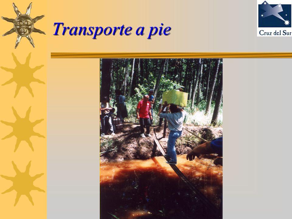 Transporte a pie