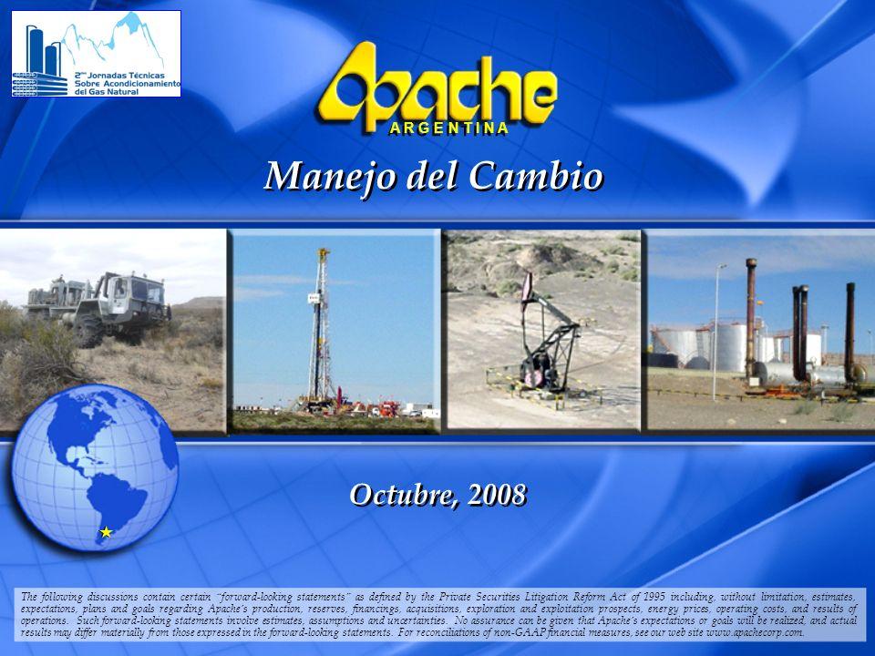 APA ARGENTINA 2006 PP TEMPLATE.ppt 4/6/2014 12 A R G E N T I N A Resultados b.Aumento de 45% en producción de gasolina, representa un ingreso de 1.075.000 U$S/año.
