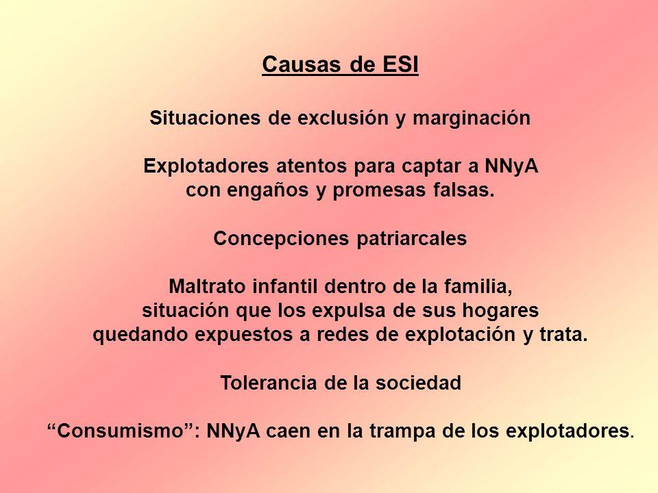 Causas de ESI Situaciones de exclusión y marginación Explotadores atentos para captar a NNyA con engaños y promesas falsas. Concepciones patriarcales