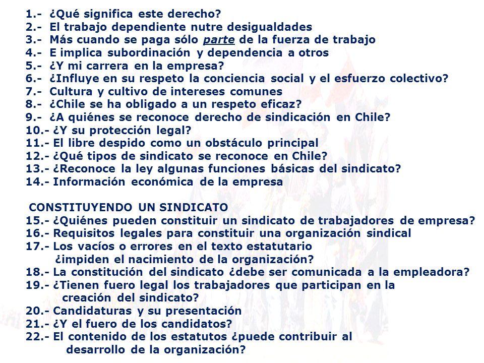 13.- ¿Reconoce la ley algunas funciones básicas del sindicato.
