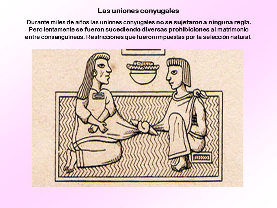 Las uniones conyugales Durante miles de años las uniones conyugales no se sujetaron a ninguna regla. Pero lentamente se fueron sucediendo diversas pro