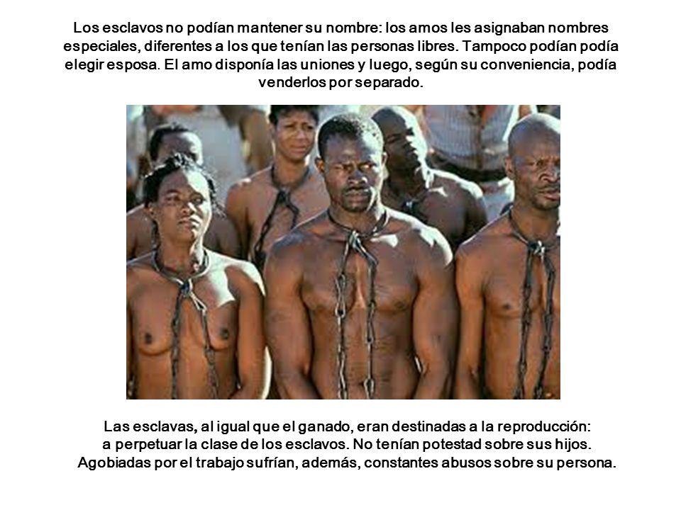 Las esclavas, al igual que el ganado, eran destinadas a la reproducción: a perpetuar la clase de los esclavos.