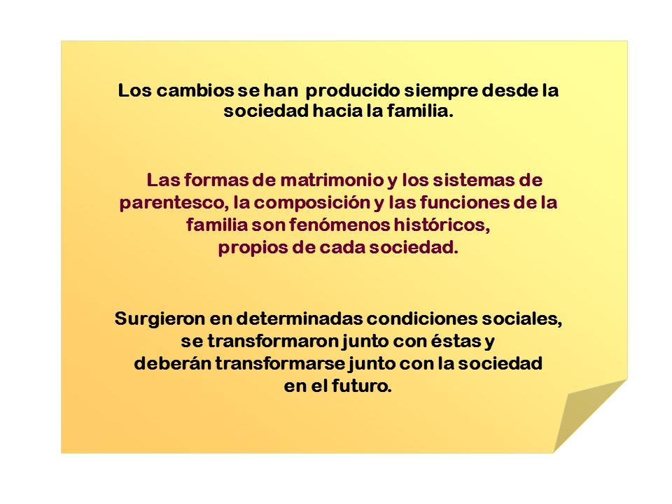 Los cambios se han producido siempre desde la sociedad hacia la familia. Las formas de matrimonio y los sistemas de parentesco, la composición y las f