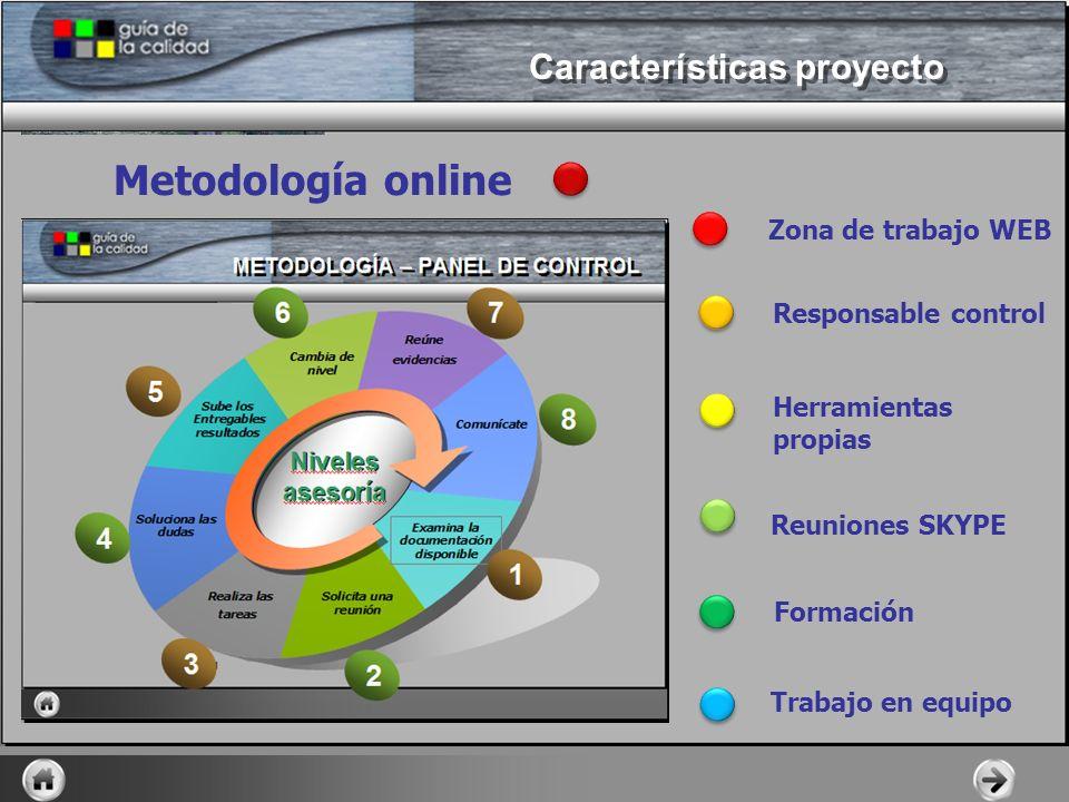 Metodología online Zona de trabajo WEB Responsable control Herramientas propias Reuniones SKYPE Formación Trabajo en equipo Características proyecto
