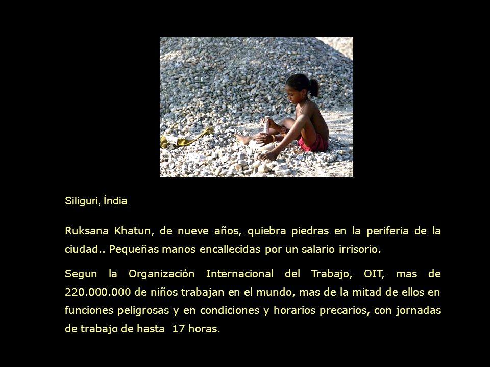 Tegucigalpa, Honduras Buitres y niños disputan las sobras que encuentran en un basural de la capital hondureña. Juan Flores y otros niños dan vuelta l