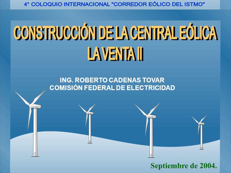ING. ROBERTO CADENAS TOVAR COMISIÓN FEDERAL DE ELECTRICIDAD Septiembre de 2004.