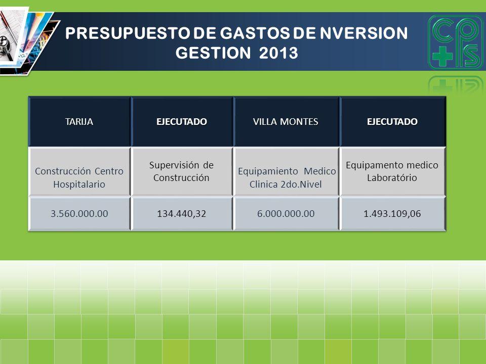 PRESUPUESTO DE GASTOS DE NVERSION GESTION 2013