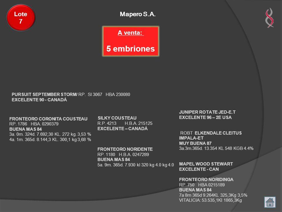 Mapero S.A. Lote 7 FRONTEORO CORONITA COUSTEAU RP. 1786 HBA. 0290379 BUENA MAS 84 3a. 0m. 324d. 7.692,30 KL. 272 kg. 3,53 % 4a. 1m. 365d. 8.144,3 KL.