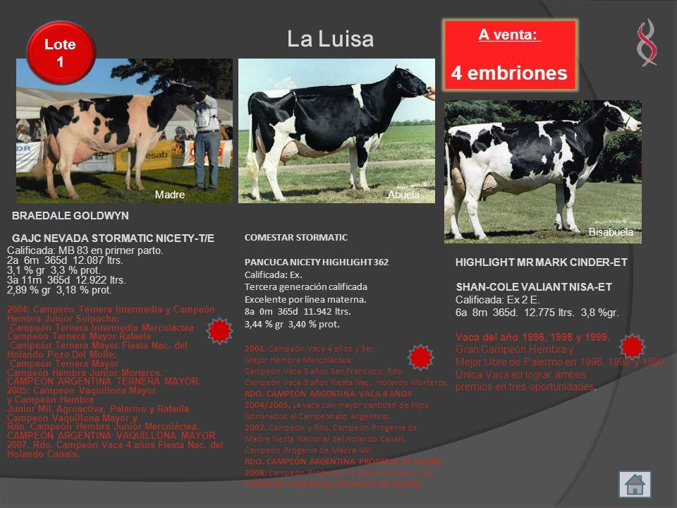 MadreAbuela Bisabuela La Luisa A venta: 4 embriones Lote 1 GAJC NEVADA STORMATIC NICETY-T/E Calificada: MB 83 en primer parto. 2a 6m 365d 12.087 ltrs.