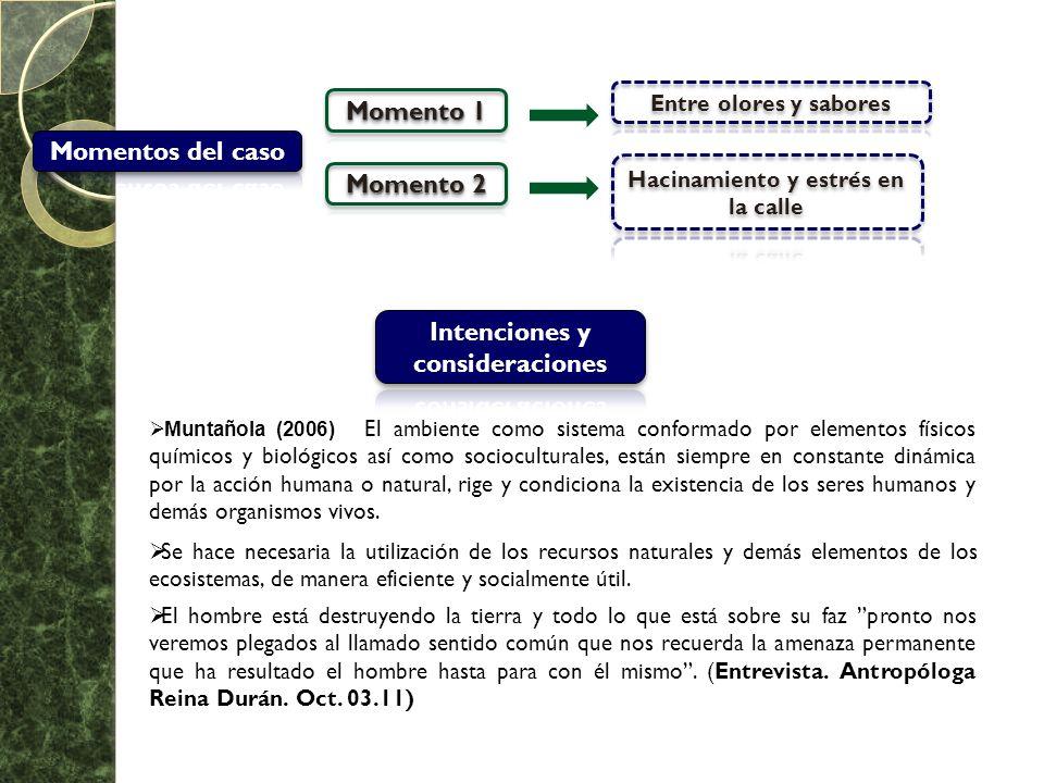 Muntañola (2006) El ambiente como sistema conformado por elementos físicos químicos y biológicos así como socioculturales, están siempre en constante