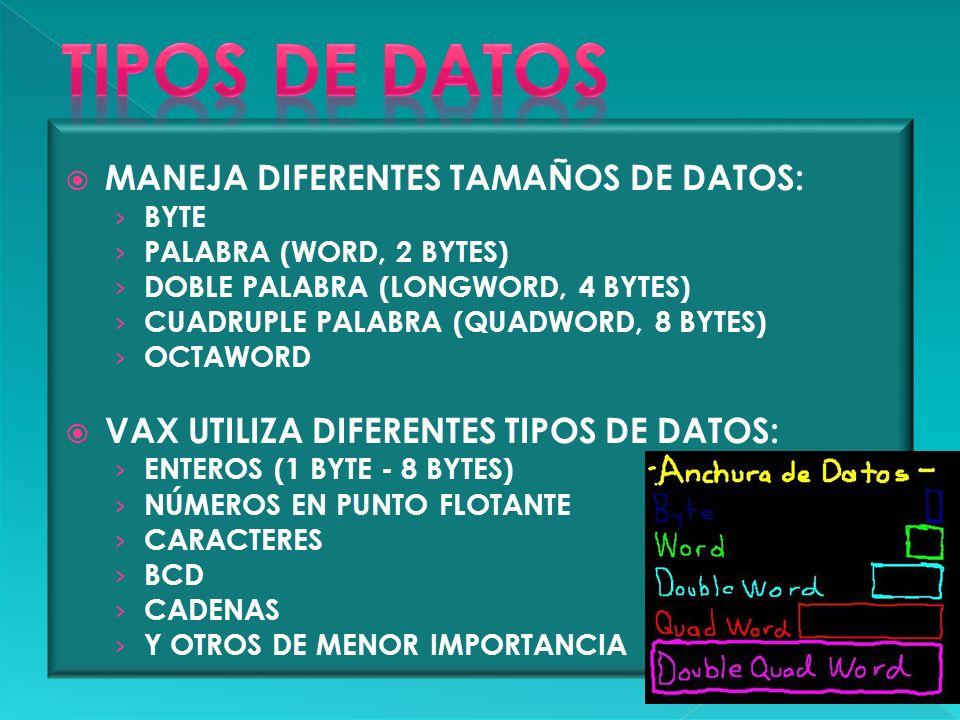 MANEJA DIFERENTES TAMAÑOS DE DATOS: BYTE PALABRA (WORD, 2 BYTES) DOBLE PALABRA (LONGWORD, 4 BYTES) CUADRUPLE PALABRA (QUADWORD, 8 BYTES) OCTAWORD VAX