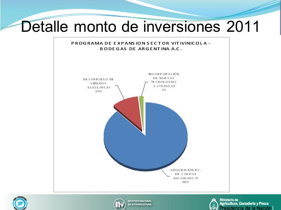 Detalle monto de inversiones 2011