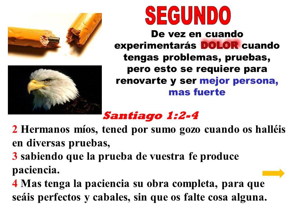 Santiago 1:2-4 2 Hermanos míos, tened por sumo gozo cuando os halléis en diversas pruebas, 3 sabiendo que la prueba de vuestra fe produce paciencia. 4