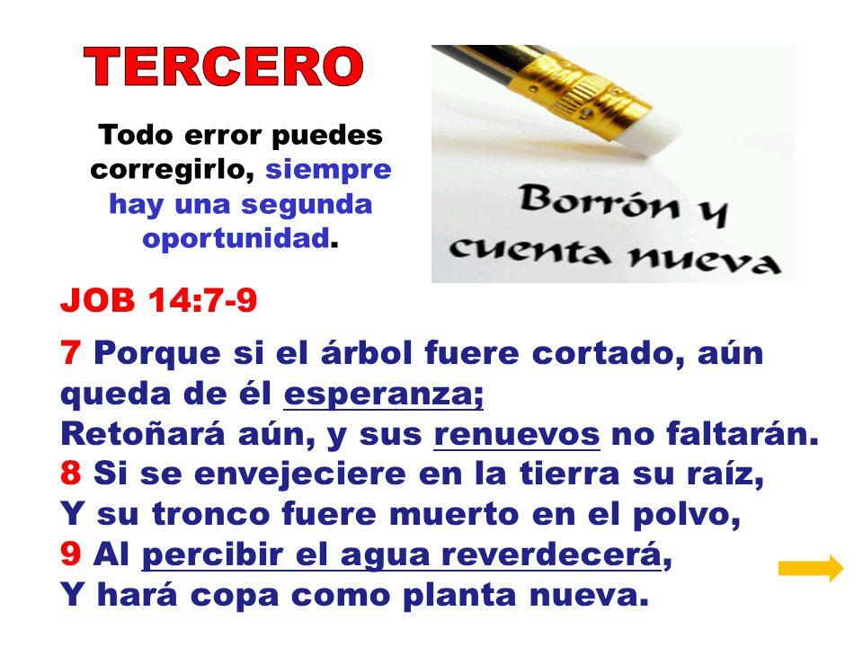 Todo error puedes corregirlo, siempre hay una segunda oportunidad. JOB 14:7-9 7 Porque si el árbol fuere cortado, aún queda de él esperanza; Retoñará