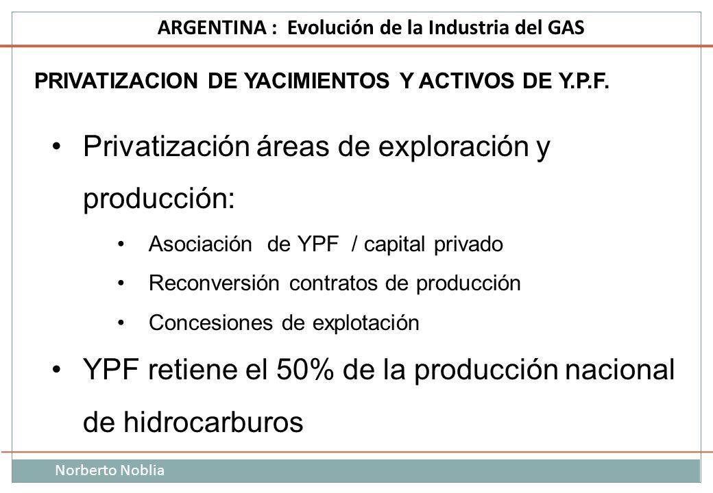 Norberto Noblia ARGENTINA : Evolución de la Industria del GAS PRIVATIZACION DE YACIMIENTOS Y ACTIVOS DE Y.P.F. Privatización áreas de exploración y pr