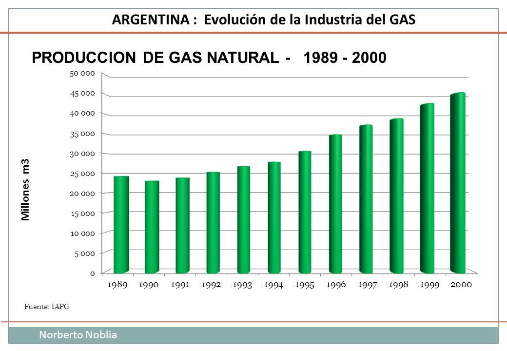 Norberto Noblia ARGENTINA : Evolución de la Industria del GAS PRODUCCION DE GAS NATURAL - 1989 - 2000 Fuente: IAPG Millones m3
