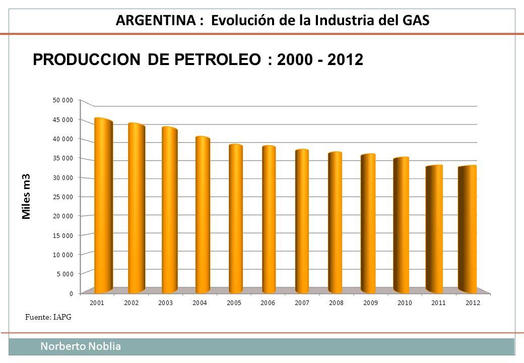 Norberto Noblia ARGENTINA : Evolución de la Industria del GAS PRODUCCION DE PETROLEO : 2000 - 2012 Fuente: IAPG Miles m3