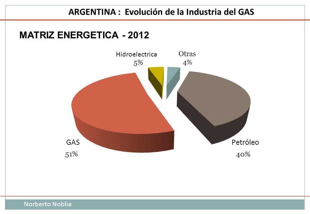 Norberto Noblia ARGENTINA : Evolución de la Industria del GAS MATRIZ ENERGETICA - 2012