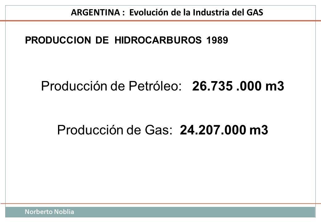 Norberto Noblia ARGENTINA : Evolución de la Industria del GAS Producción de Petróleo: 26.735.000 m3 Producción de Gas: 24.207.000 m3 PRODUCCION DE HID