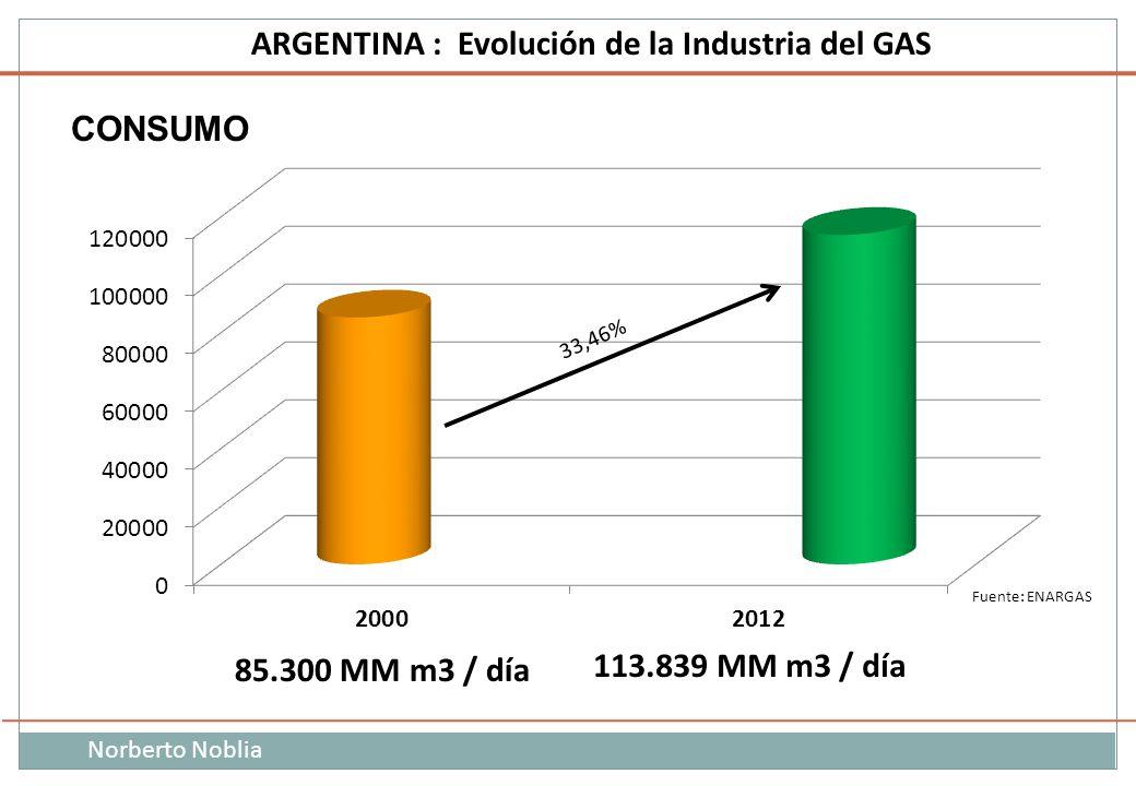 Norberto Noblia ARGENTINA : Evolución de la Industria del GAS Fuente: ENARGAS 85.300 MM m3 / día 113.839 MM m3 / día CONSUMO