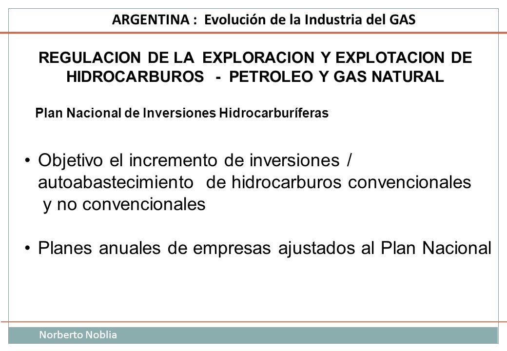 Norberto Noblia ARGENTINA : Evolución de la Industria del GAS REGULACION DE LA EXPLORACION Y EXPLOTACION DE HIDROCARBUROS - PETROLEO Y GAS NATURAL Pla