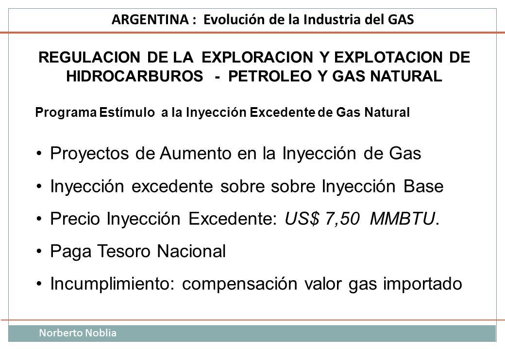 Norberto Noblia ARGENTINA : Evolución de la Industria del GAS REGULACION DE LA EXPLORACION Y EXPLOTACION DE HIDROCARBUROS - PETROLEO Y GAS NATURAL Pro
